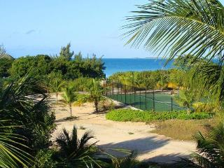 Surrounded by palm trees on an acre of Sunset Bay- a beautiful beach, known for privacy. IE ETO - Ocean Point vacation rentals