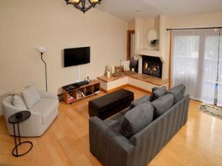 Telemark #11 - Avon vacation rentals