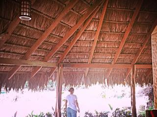 Palapa Hut, Puerto Jimenez, OSA Peninsula - Puerto Jimenez vacation rentals