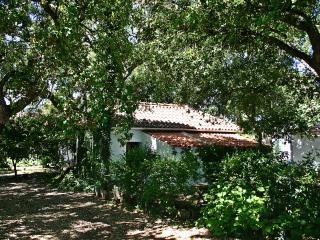 Casa do Granho - Turismo Rural - Salvaterra de Magos vacation rentals