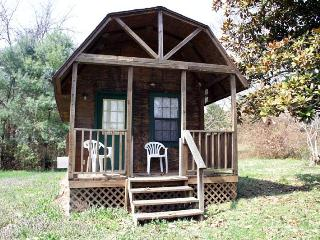 Little Cabin ~ Rustic, Affordable, Family Friendly - Dandridge vacation rentals