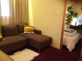 Cozy Vacation Apartment in Tsim Sha Tsui, Hong Kong - Hong Kong vacation rentals