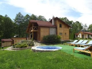 Holiday home - Valisoara - Romania vacation rentals