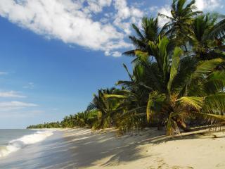 The Tides Lodge - Beach House - Pangani vacation rentals