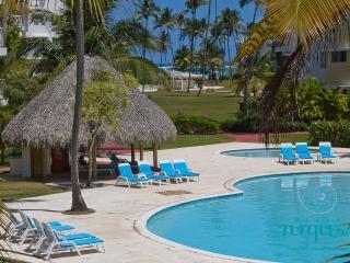 PLAYA TURQUESA 2 br in ocean front complex - Bavaro vacation rentals