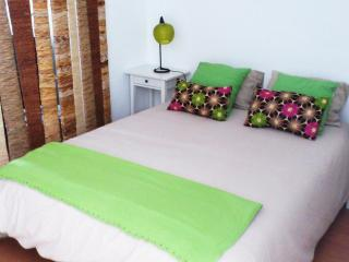 Studio in Belém w/ WIFi + 2 bikes + easy parking - Abrantes vacation rentals