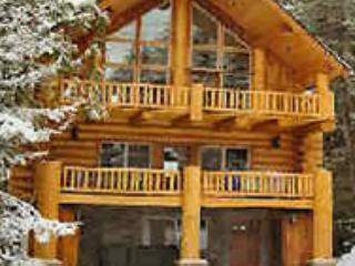 1821-81091 - Government Camp vacation rentals