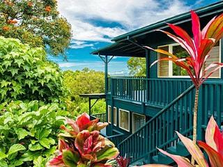 BALI STUDIO, LUSH ACRES & STREAM IN KAPA - Kapaa vacation rentals