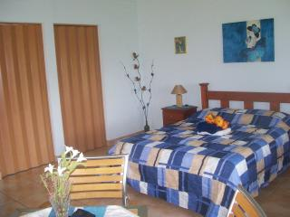 'Cumbre Bavaria de Atenas'  Studio apartment - Atenas vacation rentals