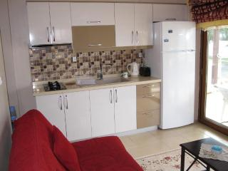 Seaside Luxury 1 Bedroom Apartment - Turgutreis vacation rentals