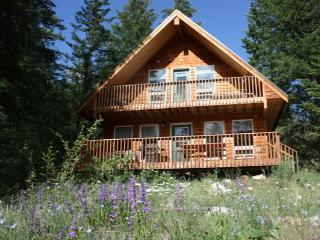 Charming Methow Valley Cabin on Fawn Creek - Mazama vacation rentals