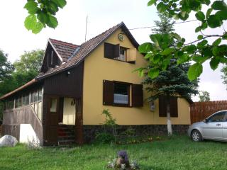 Wonderful House with Porch and Television - Izvoare vacation rentals