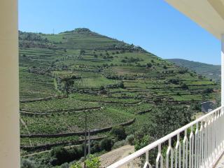 Casa Amarela - Douro Wine Region - Pinhao vacation rentals