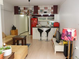 Luxury house with private garden - Istanbul vacation rentals