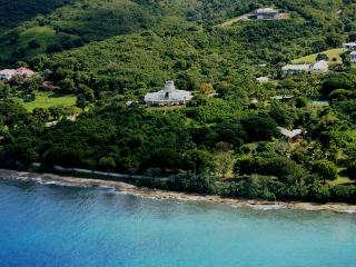 Serene Beachside Villa Built Around Historic Mill - Frederiksted vacation rentals