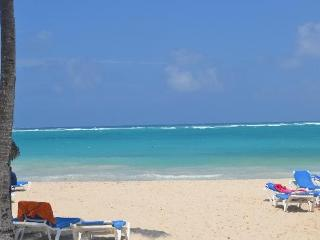 All meals&drinks included-Rm in Beachside resort - Punta Cana vacation rentals