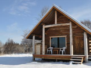 Old Town Kenai Cabin: Spectacular Waterfront View - Kenai vacation rentals