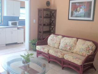 Northside 1 bed 2 bath Apt. St. Thomas - Charlotte Amalie vacation rentals