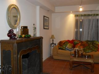 Cozy 1 bedroom Condo in Alajuela - Alajuela vacation rentals