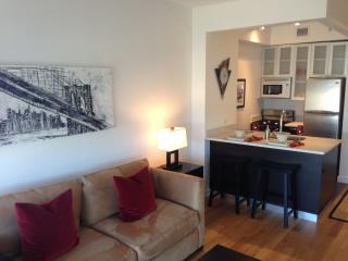 Luxury Studio Near Central Park - New York City vacation rentals