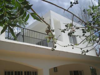 Studio Efficiency - Upstairs - Valladolid vacation rentals