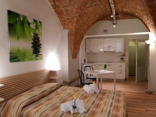 LE VOLTE - City Center Romantic Studio AC&wifi - Tuscany vacation rentals