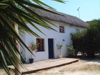 El Cortijo . Spacious Rustic Casa Rural/Playa - Cadiz vacation rentals