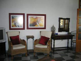 Salobrena, Spain 3 Bedroom Home - Salobrena vacation rentals