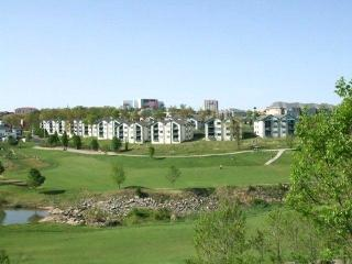 AFFORDABLE LUXURY**GORGEOUS CONDO-INDOOR POOL - Branson vacation rentals