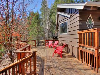 Mountain Time - Spa! Upscale! Shuffleboard! Yard! - Big Bear Lake vacation rentals