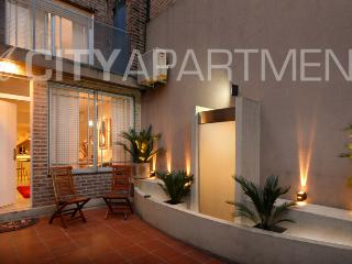 Cozy 2 bedroom Apartment in Buenos Aires - Buenos Aires vacation rentals