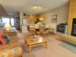 EAST BAY 8: 1 Bed/1 Bath on Lake Dillon, Spectacular Views, Covered Parking, WiFi - Dillon vacation rentals
