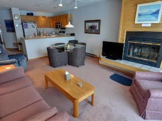 EAST BAY: 2nd Floor 1 Bed/1 Bath On Lake Dillon, Spectacular Views, Covered Parking, Wi-Fi, King Bed - Dillon vacation rentals