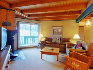 TREEHOUSE 107: First Floor 2 Bed/2 Bath, Convenient Location for Summer & Winter Activities, Include - Silverthorne vacation rentals