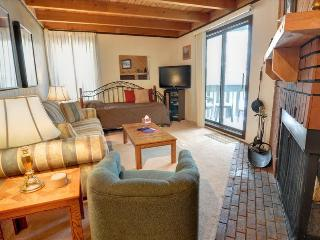 TREEHOUSE G-208: 1 Bed/1 Bath Condo, Brimming with Convenience and Comfort in a Great Location - Summit County Colorado vacation rentals