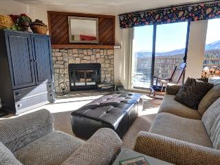 BUFFALO RIDGE 205: 2 Bed/2 Bath, Condo with Views, Sleeps 6, Clubhouse, Trails, Covered Parking - Silverthorne vacation rentals