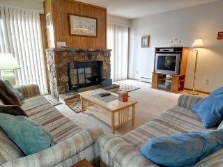 BUFFALO VILLAGE 101: 2 Bed/2 Bath, Sleeps 8 Comfortably, Elevator, Free Wi-Fi, All of Mother Nature - Silverthorne vacation rentals