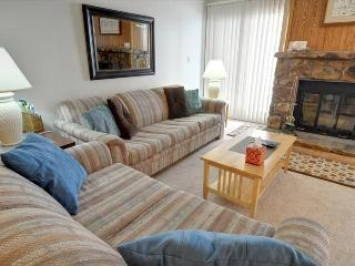 BUFFALO VILLAGE 101: 2 Bed/2 Bath, Sleeps 7, Elevator, Wi-Fi, All of Mother Nature Only Steps Away - Silverthorne vacation rentals