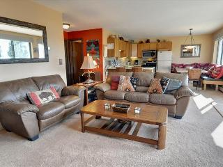 BUFFALO RIDGE 202: 2 Bed/2 Bath, Updated Kitchen, Carport, Nice Views, Large Clubhouse - Silverthorne vacation rentals