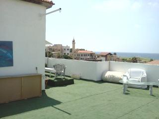A beautiful rooftop oceanfront home - Gedera vacation rentals