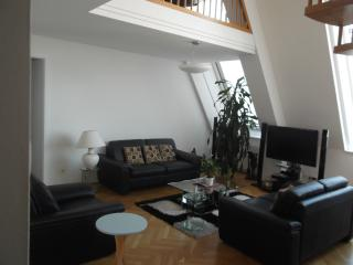 Well furnished Apartment for short term rent - Vienna vacation rentals
