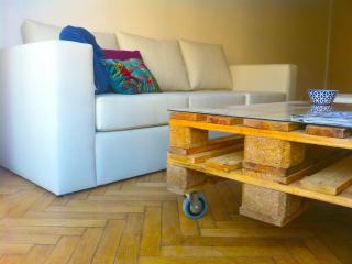 Magnifico Apartamento  en Palermo - Capital Federal District vacation rentals