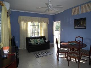 Beautiful Apartment in Liguanea - Saint Andrew Parish vacation rentals