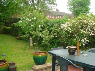 Kilkenny city centre garden apartment - Kilkenny vacation rentals