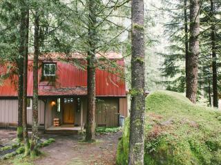 Mt Hood Skiing/Boarding/Hiking/Fishing Destination - Rhododendron vacation rentals