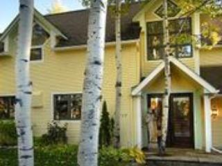 Aspen Colorado Jewel - Aspen vacation rentals