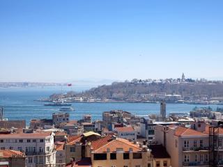 GALATA &Industrial Design & SEA VIEW  & 3 Bedroom - Istanbul vacation rentals