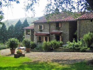 Pietrina - San Giustino Valdarno vacation rentals