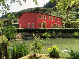 Historical Tuscan townhouse Casa Felice Matteucci in splendid natural setting with pool - Vorno vacation rentals