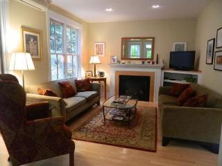 Charming 3 Bed 3.5 Bath Townhouse in Stowe Village. Enjoy Many great restaurants and shops in walking distance!! - Stowe vacation rentals